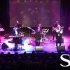 Night Fever - BeeGees Tribute Show
